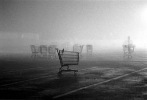 shoppingcarts
